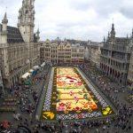 Brussels 20th Flower Carpet 2016