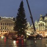 Christmas tree for Grand Place from Slovakia